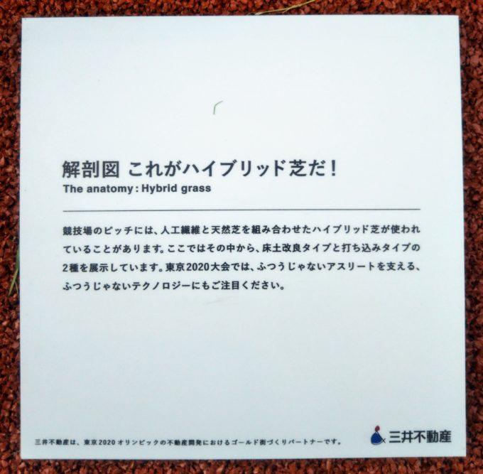 ふつうじゃない2020展