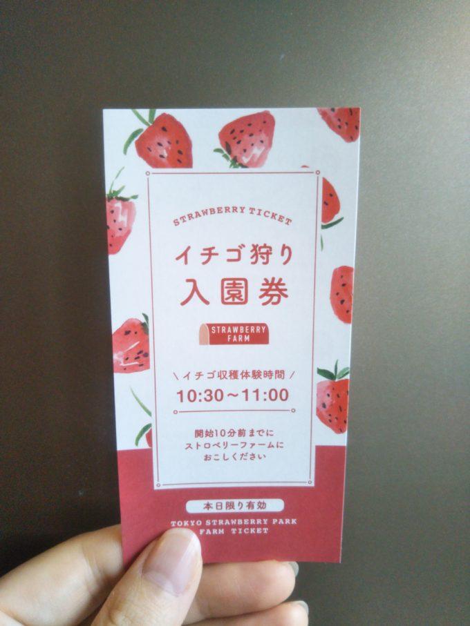東京ストロベリーパーク_スロトベリーファーム入園券