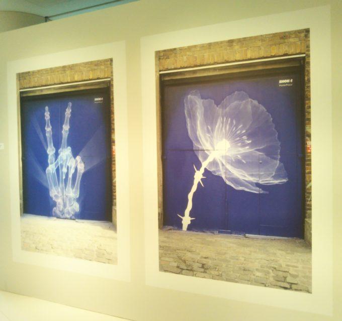 bally銀座SHOK-1の展示作品 ピースサインとお花の背景の青みが海の中で見ているような気分