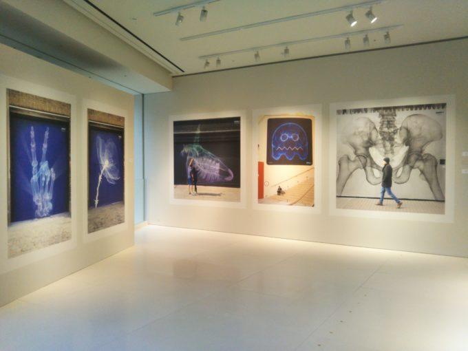 bally銀座SHOK-1の展示作品 モノクロと青い色合いがシックな雰囲気