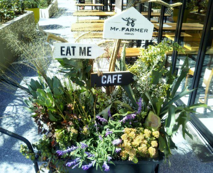三井アウトレットパーク木更津 ミスターファーマー(Mr. FARMER)のテラス席近くに二輪車のせた草花がディスプレイされていて可愛い