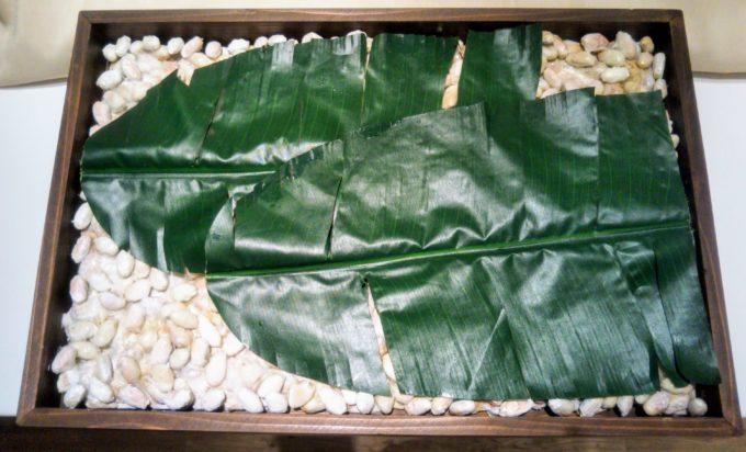 カカオ豆はバナナの葉を使って発酵