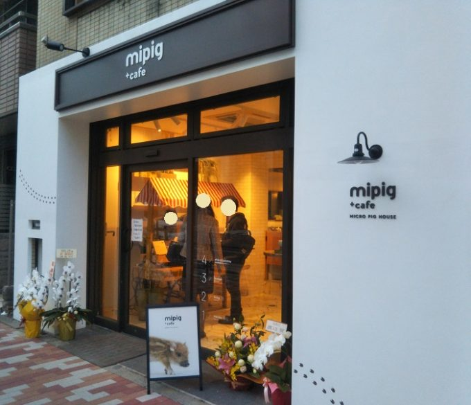 mipigcafeの入口