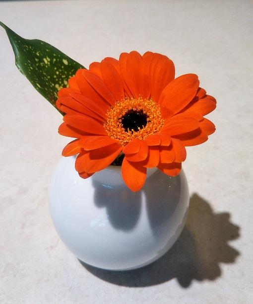 テーブルの上には一輪のお花が可愛くてオシャレ♪【アンナーズ バイ ラントマンカフェ 渋谷スクランブルスクエア】